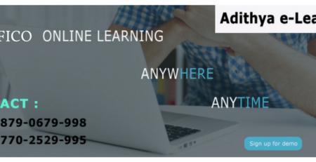 SAP Success Factors Online Training Institute